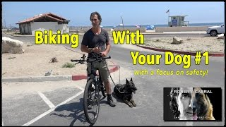 Biking With Your Dog - The