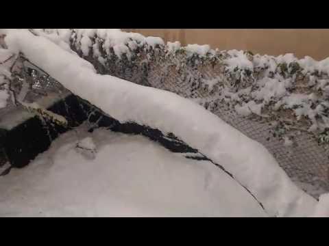 21.04.2017 Погода в Молдове, Чореску. Стихийное бедствие