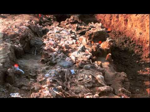 Epizoda 67: Srebrenica - Kako dokazati genocid