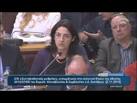H Θεοδότα Νάντσου στην Επιτροπή Παραγωγής και Εμπορίου της Βουλής