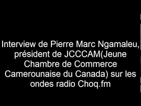 jcccam - Le Prsident de la jeune Chambre de commerce camerounaise du Canada tait l'invit le vendredi 23 novembre de l'mission d'actualit africaine. Pour plus d'i...