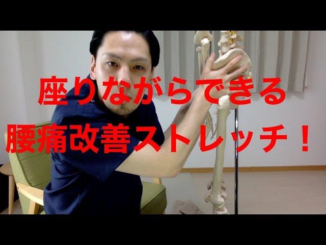 【高槻 腰痛】座りながらできる腰痛改善ストレッチ!