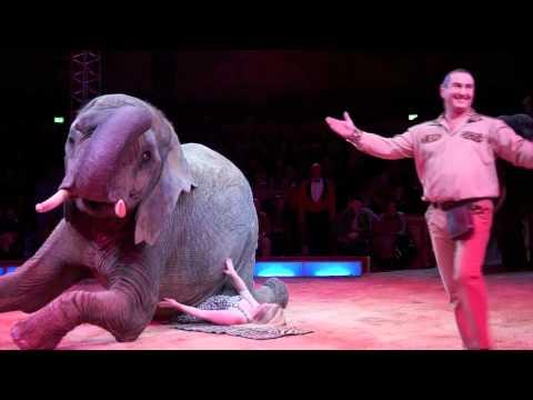 circus - Circus Krone: Premiere 1. Winterspielzeit 2012 am 25.12.2011. Traditionell startet die Winterspielzeit des Traditionszirkus Krone in seinem Münchner Stammhau...