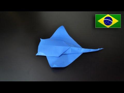 Arraia ou Peixe Batoidea