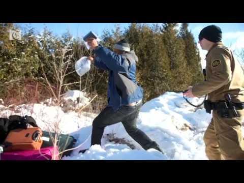 Video Eight people flee U.S. border patrol to seek asylum in Canada download in MP3, 3GP, MP4, WEBM, AVI, FLV February 2017