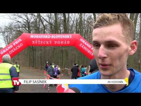 TVS: Sport 20. 3. 2017