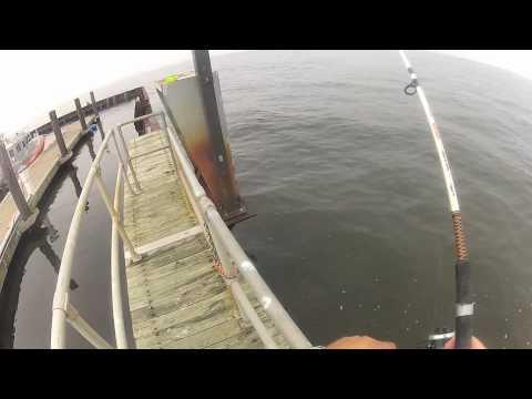 Sandy Hook Fluke Fishing 8-3-2012