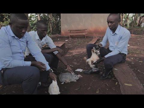 WISE Awards 2015: Από Αίγυπτο και Ουγκάντα δύο από τους νικητές – learning world