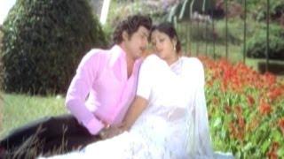 Bangaru Chellelu Songs - Chali Jwaram - Sobhan Babu, Jayasudha