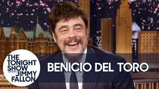 "Download Video Benicio Del Toro Reacts to Guardians of the Galaxy Fans ""Riding Him"" at Disneyland MP3 3GP MP4"