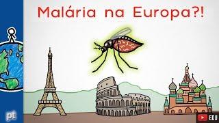 Por que a malária não é apenas uma doença tropical?  Minuto da Terra