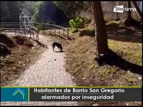 Habitantes de Barrio San Gregorio alarmados por inseguridad