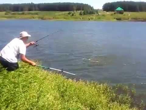 платная рыбалка озеро тетеево