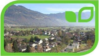Stauden für Obst und Beeren: Robert pflanzt Fruchtfreundinnen