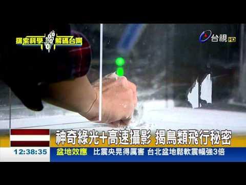 飛翔如鳥台灣科學家挑戰微飛行器