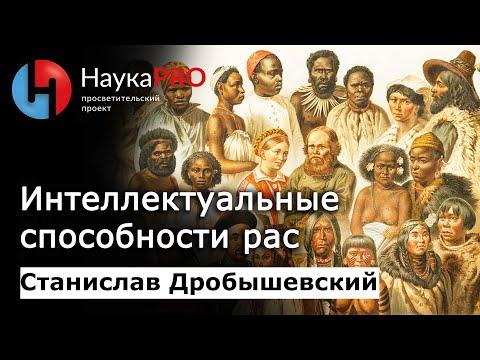 Антрополог Дробышевский об интеллекте разных рас