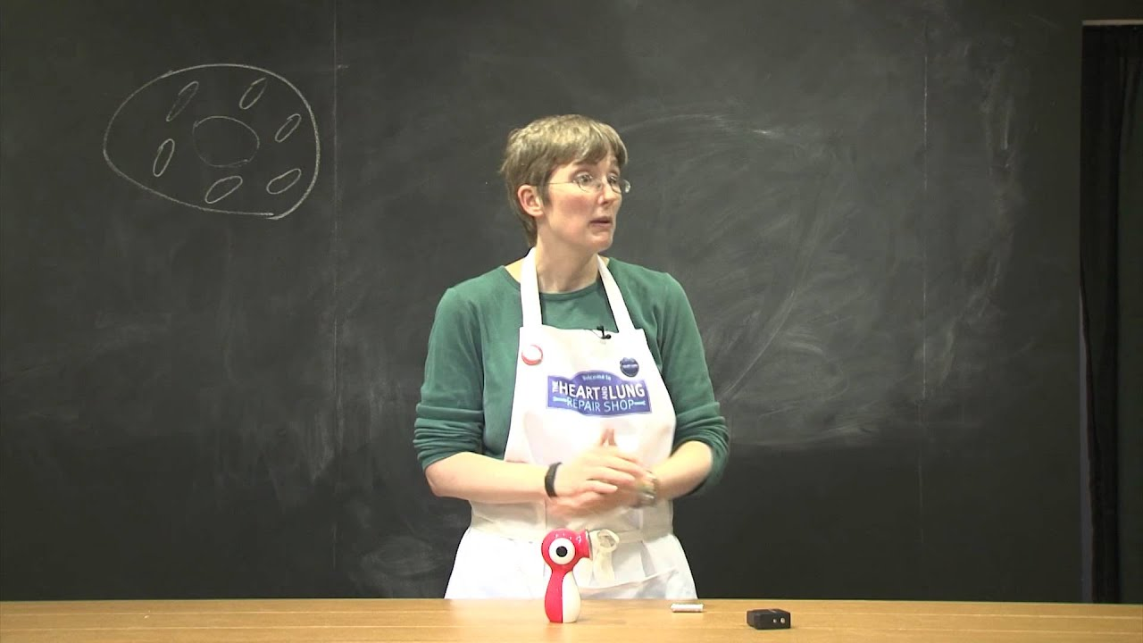 Shop demo - Mighty Mitochondria by Jennifer Simonotto