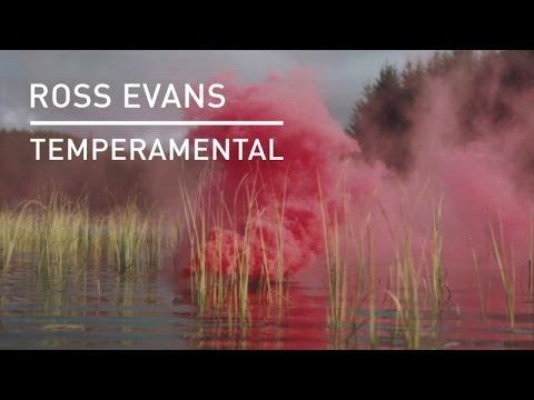 Ross Evans - Temperamental (Vibe Killers Remix)