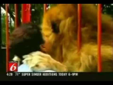 leone ritrova la sua padrona dopo anni. favoloso!!!