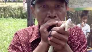 Video Kreatif Mainan handmade Meniru Suara Hewan MP3, 3GP, MP4, WEBM, AVI, FLV Januari 2019