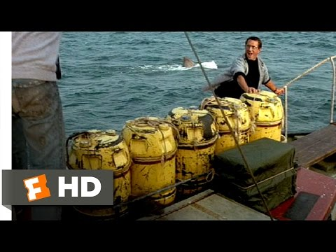 Jaws (1975) - Barrels Scene (5/10) | Movieclips