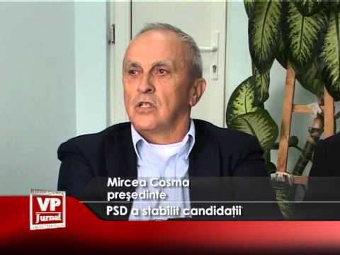 PSD a stabilit candidații