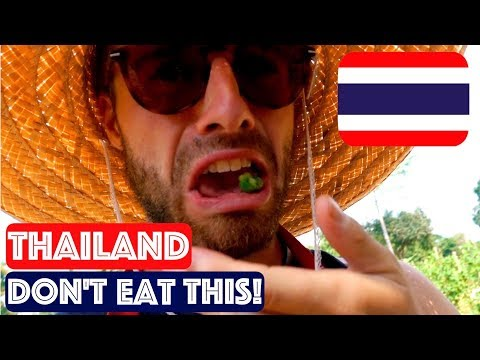 HOW TO COOK THAI FOOD || ORGANIC THAI FARM COOKING SCHOOL CHIANG MAI || TRAVEL THAILAND