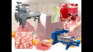 pomegranate juice processing line youtube video