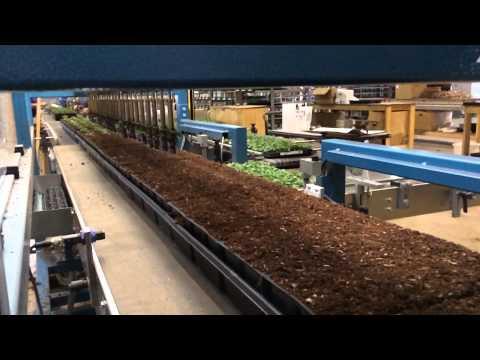 Watch a robot do rapid-fire gardening