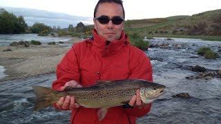 Gore New Zealand  city photos gallery : Big Brown Trout Fishing in Mataura River. Gore, New Zealand