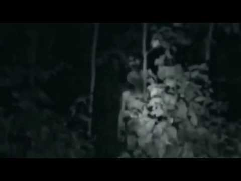 UFO 2013 – Grey Aliens Caught on tape – Ultimate Edition (HD)_(720p)