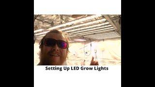 Setting Up LED Grow Lights by John Berfelo