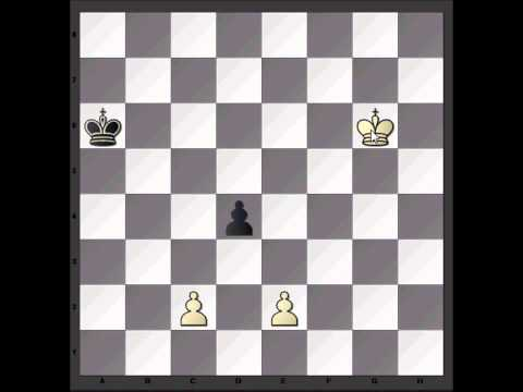 Chess Video: Endgame Study 2