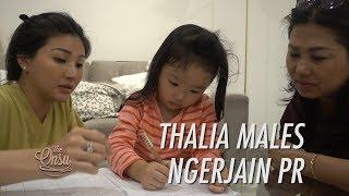 Video The Onsu Family - Thalia Males Ngerjain PR MP3, 3GP, MP4, WEBM, AVI, FLV Juli 2019