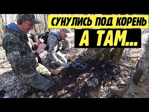 Серебро Крымского хана! Находка под корнем старого дуба
