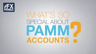 Introduction to PAMM - FXPRIMUS