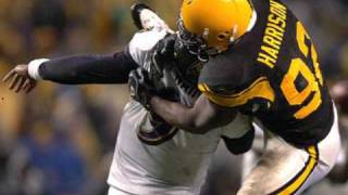 James Harrison Fined $75,000 For Illegal Hit on Mohamed Massquoi in Week 6