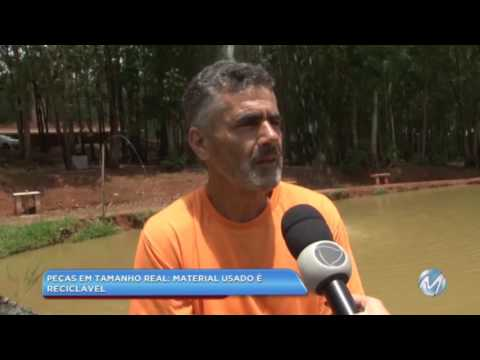 Safari artificial: artesão cria animais em sítio no Sul de Minas