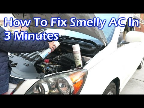 How to Fix Smelly AC in Your Car Like the Pro in 3 Minutes