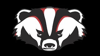 The Badger Experience