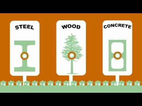 Forest Fact Break - Carbon Capture