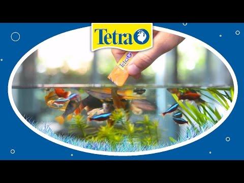 Natürliches Fischfutter: TETRA Fresh Delica