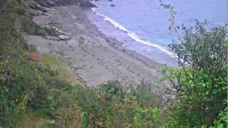 Looe United Kingdom  city images : Discover Cornwall UK - Samphire Beach near Looe with Natural Sound (HD)