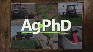 In this week's Ag PhD episode, learn about leaf burn in crops, sclerotinia white mold, and late-season weeds in corn. The Weed of the Week is Bur Cucumber, and Darren talks about late-season fertilizer in his Iron Talk segment. Thanks for watching!
