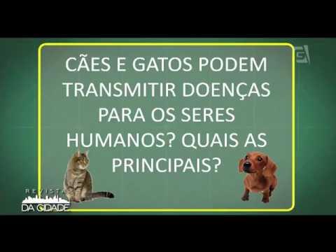 Hospital Sena Madureira esclarece dúvidas sobre saúde e bem estar dos Pets