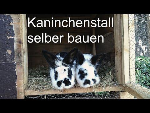 Kaninchenstall mit Freigehege selbst gebaut
