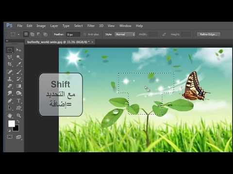 دورة photoshop CS6 الدرس الثاني: شرح أدوات التحديد marquee tool