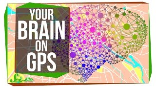 This Is Your Brain On GPS by  SciShow