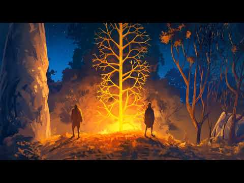 Forest Of Liars : Forest of Liars - Premier trailer