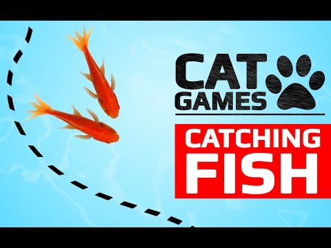 CAT GAMES - CATCHING FISH (ENTERTAINMENT VIDEOS FOR CATS TO WATCH)